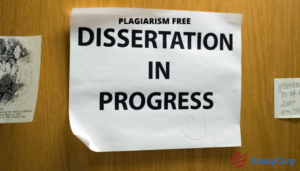 Plagiarism Free Dissertation Help- By Experts