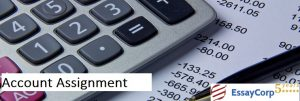 Account Assignment Help- EssayCorp