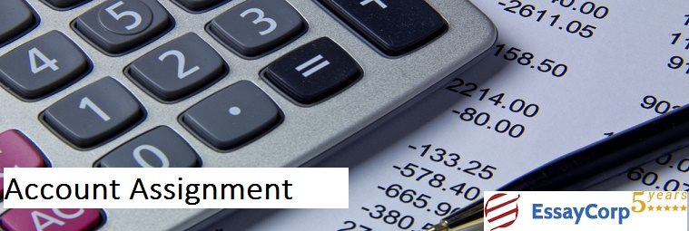 Best Solution For Your Account Assignments Problems