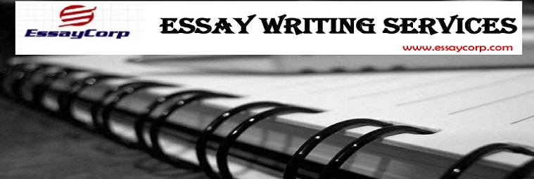 Looking For Someone To Write Your Essay
