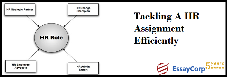 Tackling a HR Assignment Efficiently