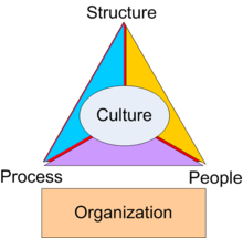 organisational culture essay
