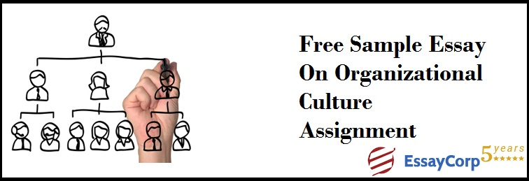 sample essay on organizational culture assignment