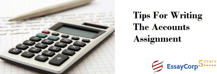 Tips For Writing the Accounts Assignment