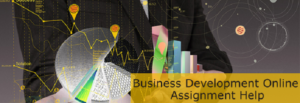 Business Development Assignment- EssayCorp