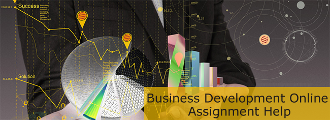business-development-assignment