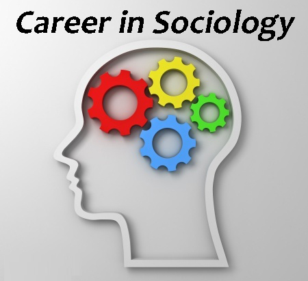 How To Write A Successful Early Career Sociologist Assignment?