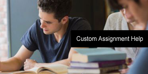 Custom Assignment Help to Score Top Grades