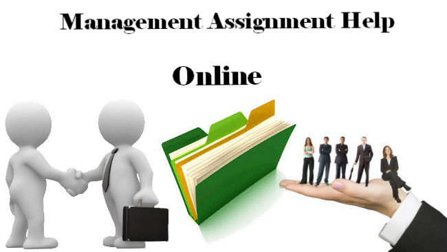 Benefits of Taking Management Assignment Help