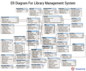 ER Of Library-EssayCorp