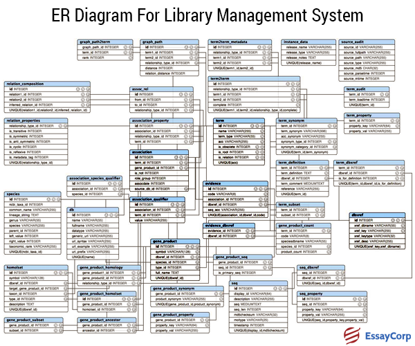 library management system essay