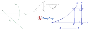 Importance Of Real Numbers-EssayCorp