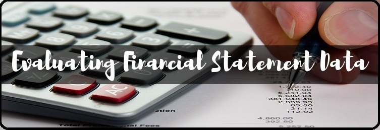 Evaluating Financial Statement Data