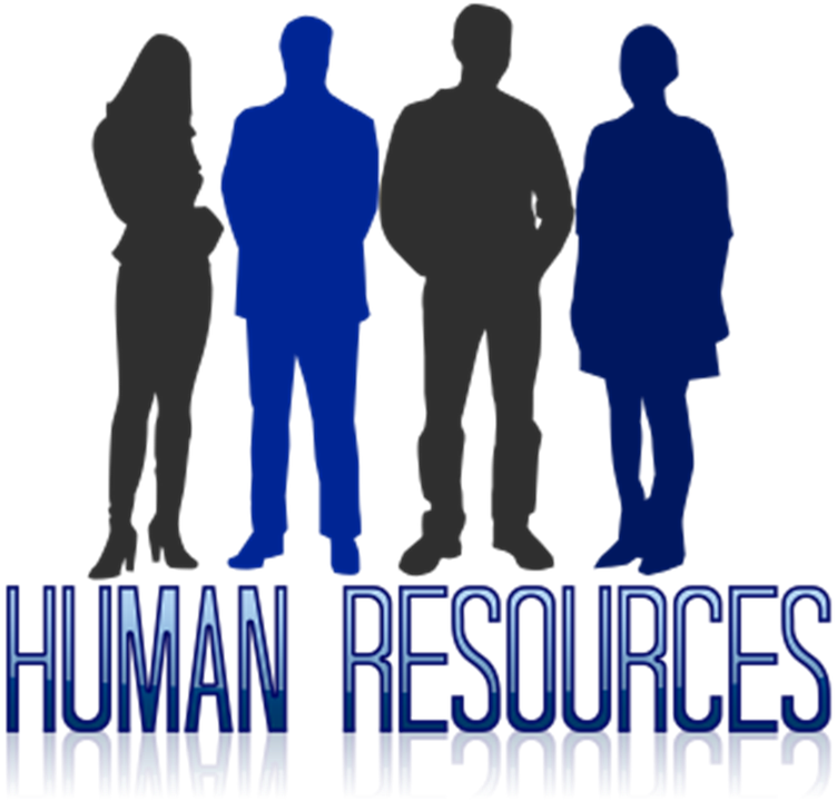 Human Resource Executive And: Primary Function Of Human Resource Management