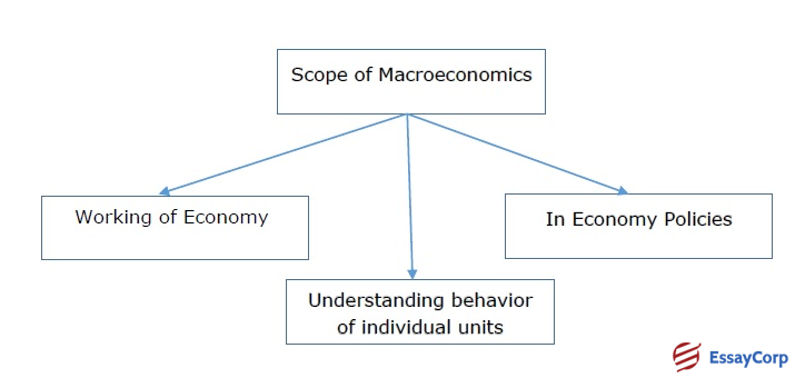 Nature And Scope Of Economics