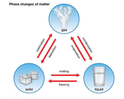 Phase Changes Of Matter- EssayCorp