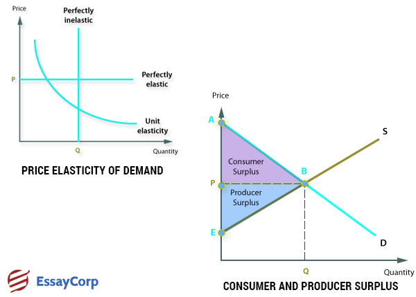 Concepts of Microeconomics- EssayCorp