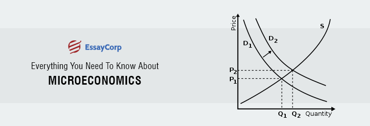 Everything You Need To Know About Microeconomics With Examples