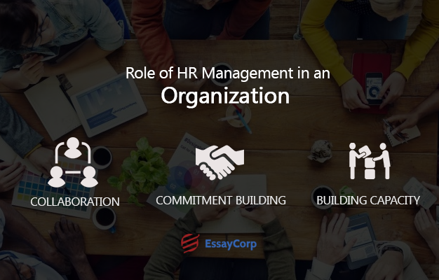 Role Of HR Management- By EssayCorp