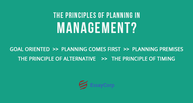 Planning Principles- By EssayCorp
