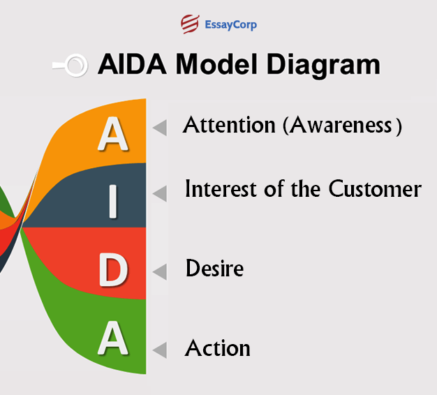 A.I.D.A. Model Stages- By EssayCorp