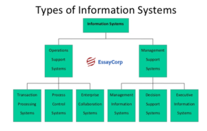 Management Information System Types- By EssayCorp