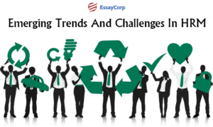 HR Related Issues- By EssayCorp