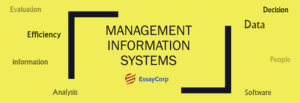 Management Information System- By EssayCorp
