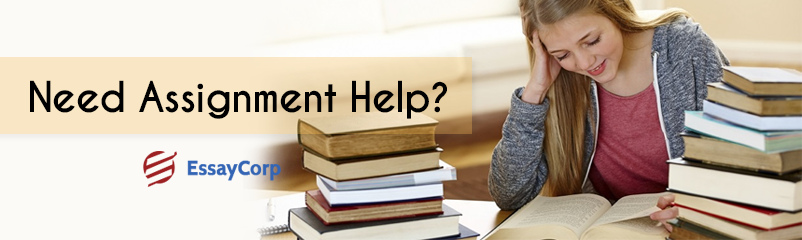 Seek Assignment Help Services and Yield Excellence