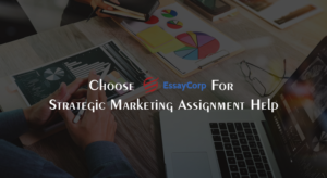 Strategy Marketing Experts