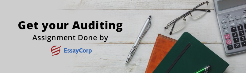 What is Auditing and Why is Auditing Necessary?