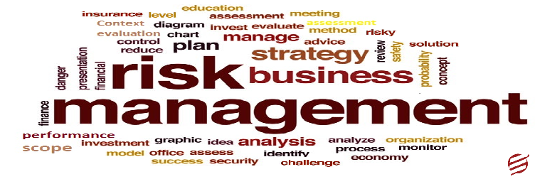 A Depth Analysis of Aspects Related to Risk Management