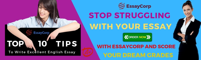 Top Ten Tips to Write Excellent English Essay