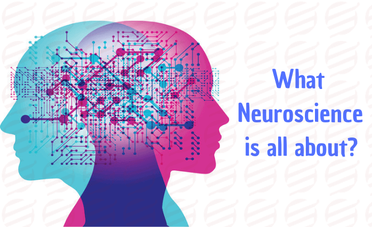 what neuroscience is all about