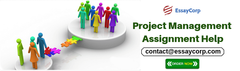 8 Bright Tips to Write Project Management Assignment