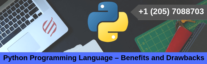Python Programming Language – Benefits and Drawbacks