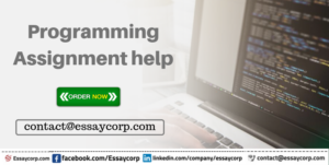 Programming Assignment help by essaycorp