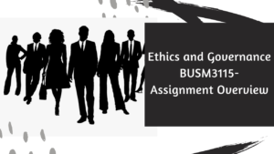 Ethics and Governance BUSM3115 - Assignment