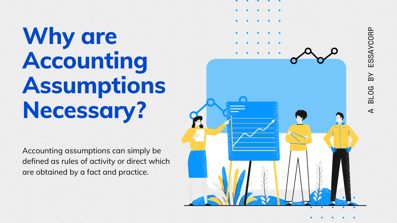 Why are Accounting Assumptions Necessary?