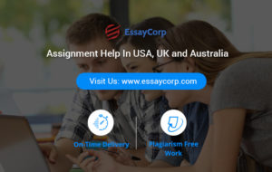 EssayCorp Features