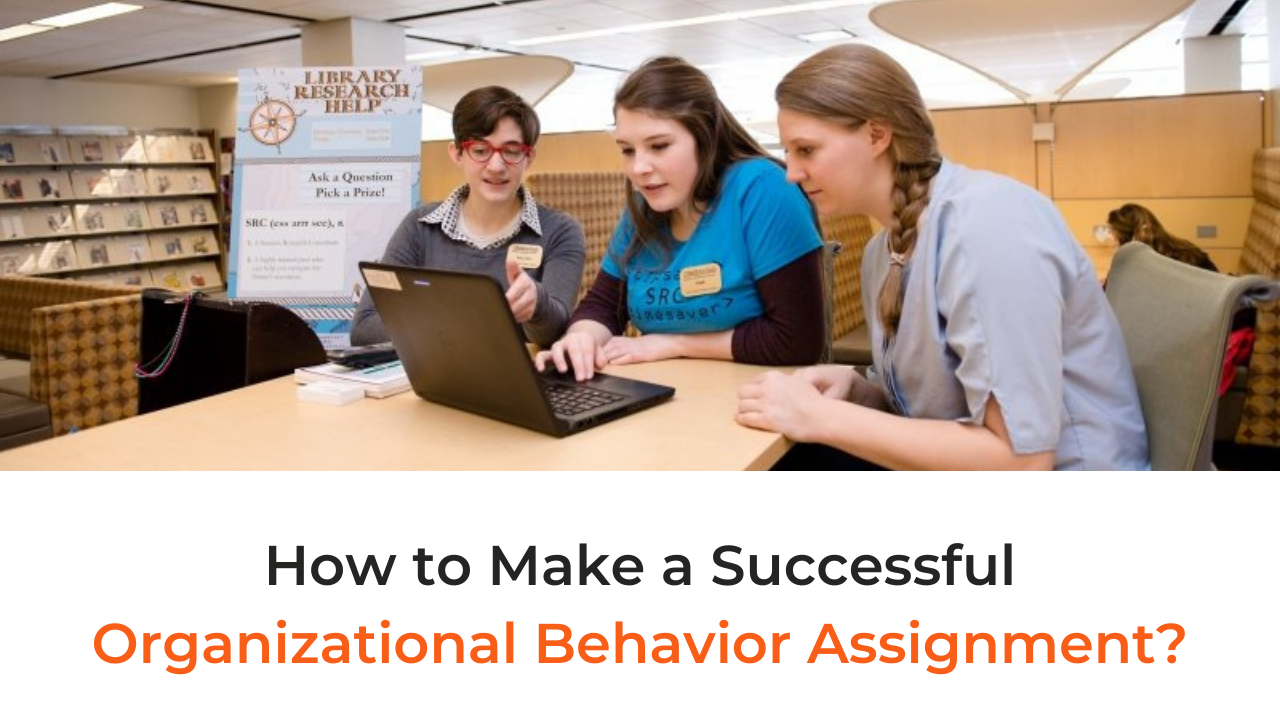 How to Make a Successful Organizational Behavior Assignment?