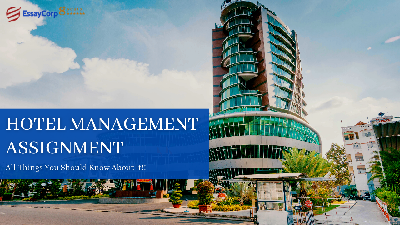 Hotel Management Assignment – Everything You Should Know