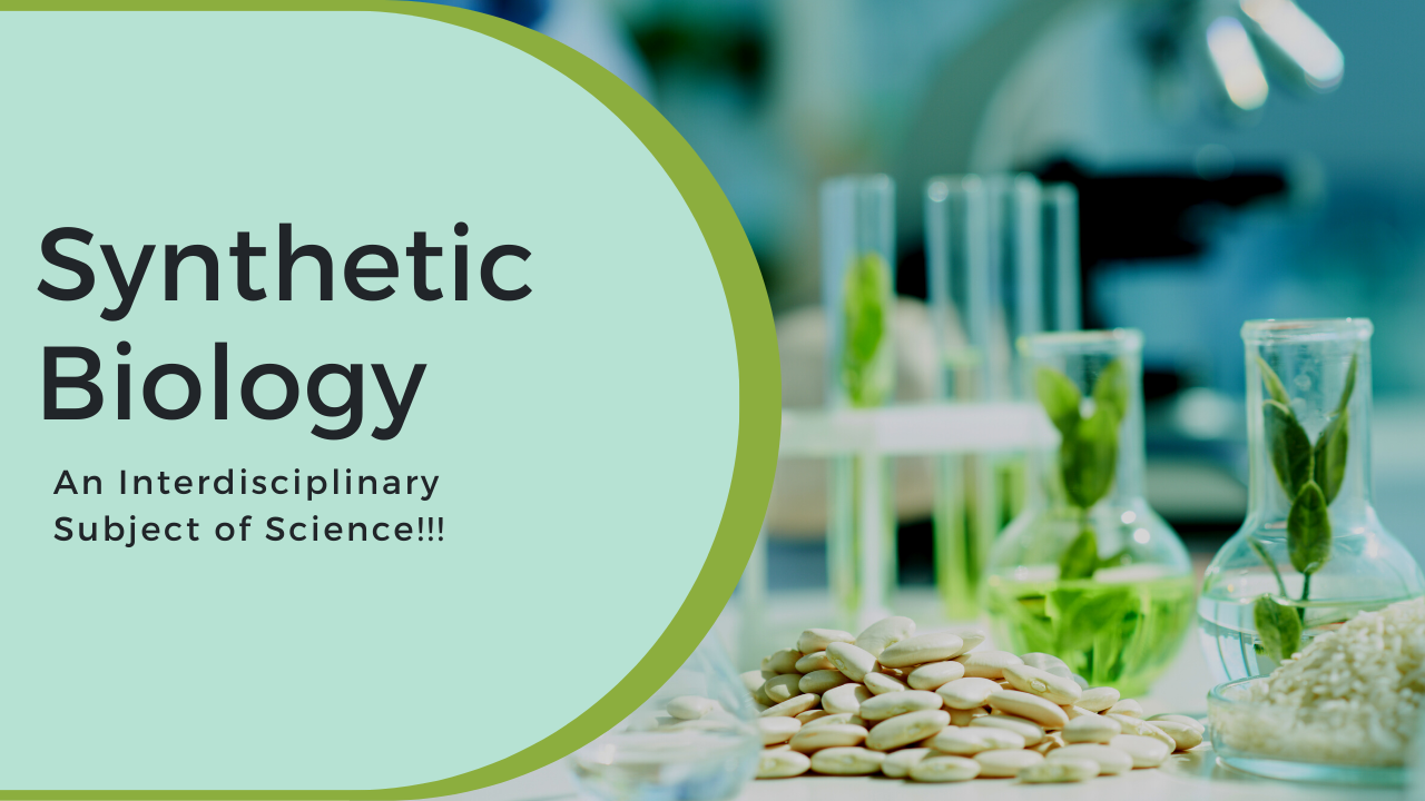 Synthetic Biology: An Interdisciplinary Subject of Science!!!