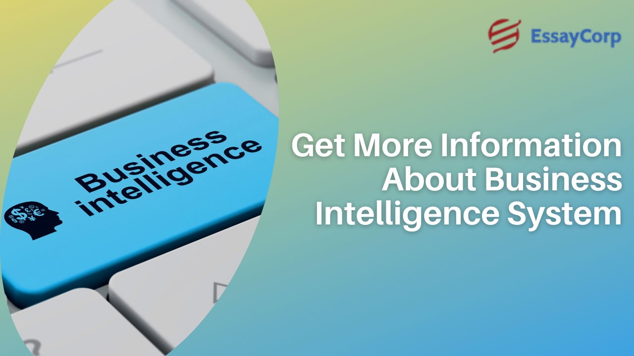 Get More Information About Business Intelligence System